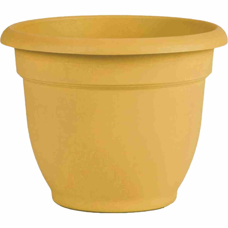 Bloem Ariana 10 In. H. x 10 In. Dia. Plastic Self Watering Earthy Yellow Planter Image 1